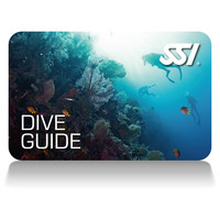 dive guide deep stop