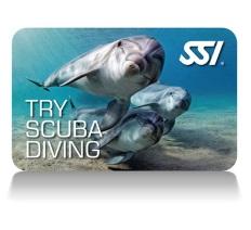 try scuba diving deep stop