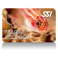 marine ecology deep stop